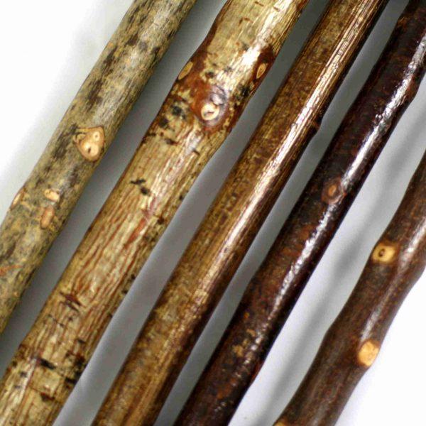 #mypetsashes walking stick pets ashes