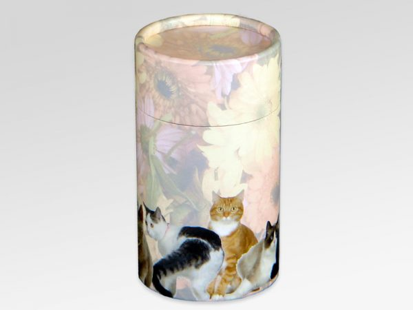 Cat Scatter Tubes