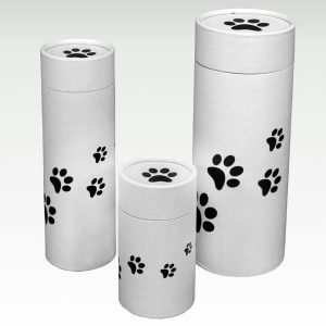 Pet Scatter Tube: Paw Prints