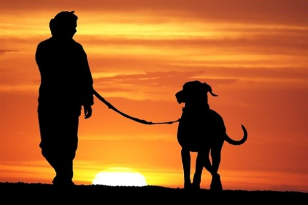 Dog ashes into Glass - sunset walk
