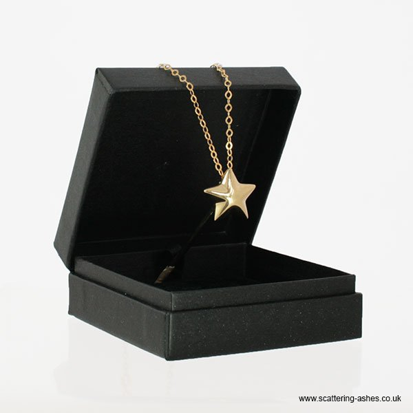 0e15fb43b6751a Gold Star Pendant | My Pet's Ashes | Cremation Jewellery for Pet Ashes