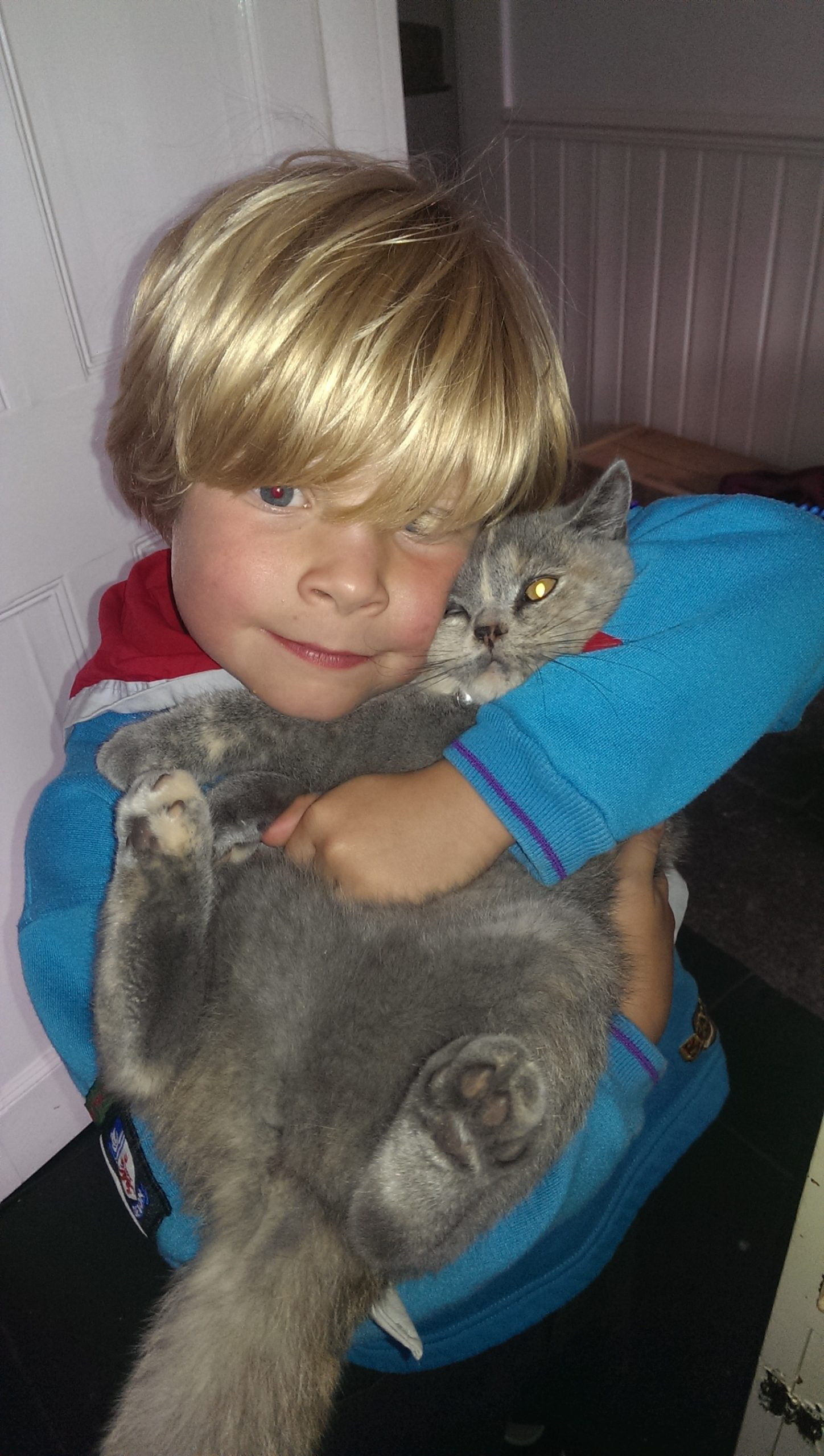Pet Bereavement Guide - Children